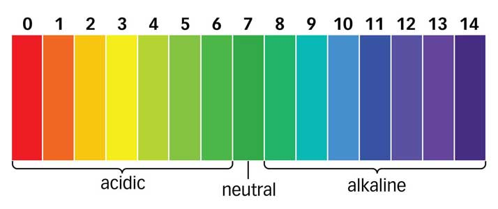 The scale of pH values